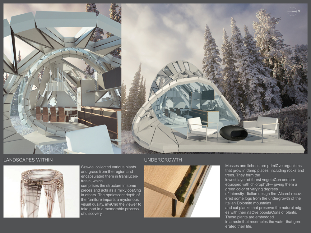 SUMMIT CABIN DESIGN PROJECT_Page_8.jpg