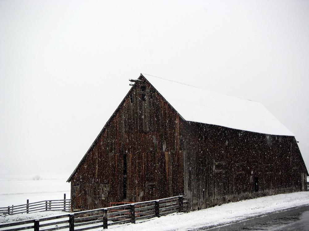 SnowyBarn.jpg