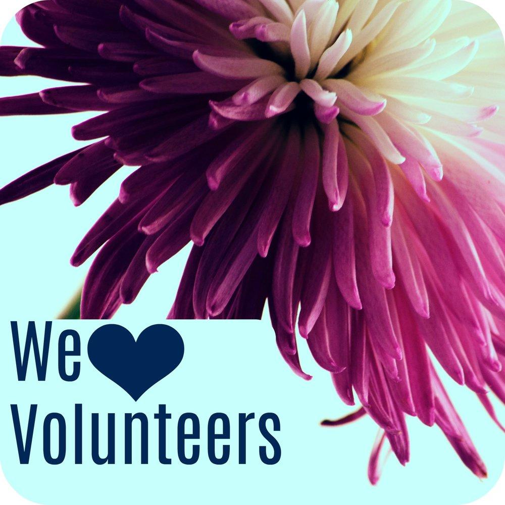 volunteer graphic .jpg