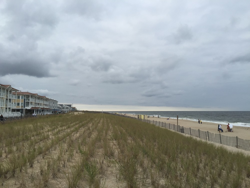 Here's what the beach looked like back in September