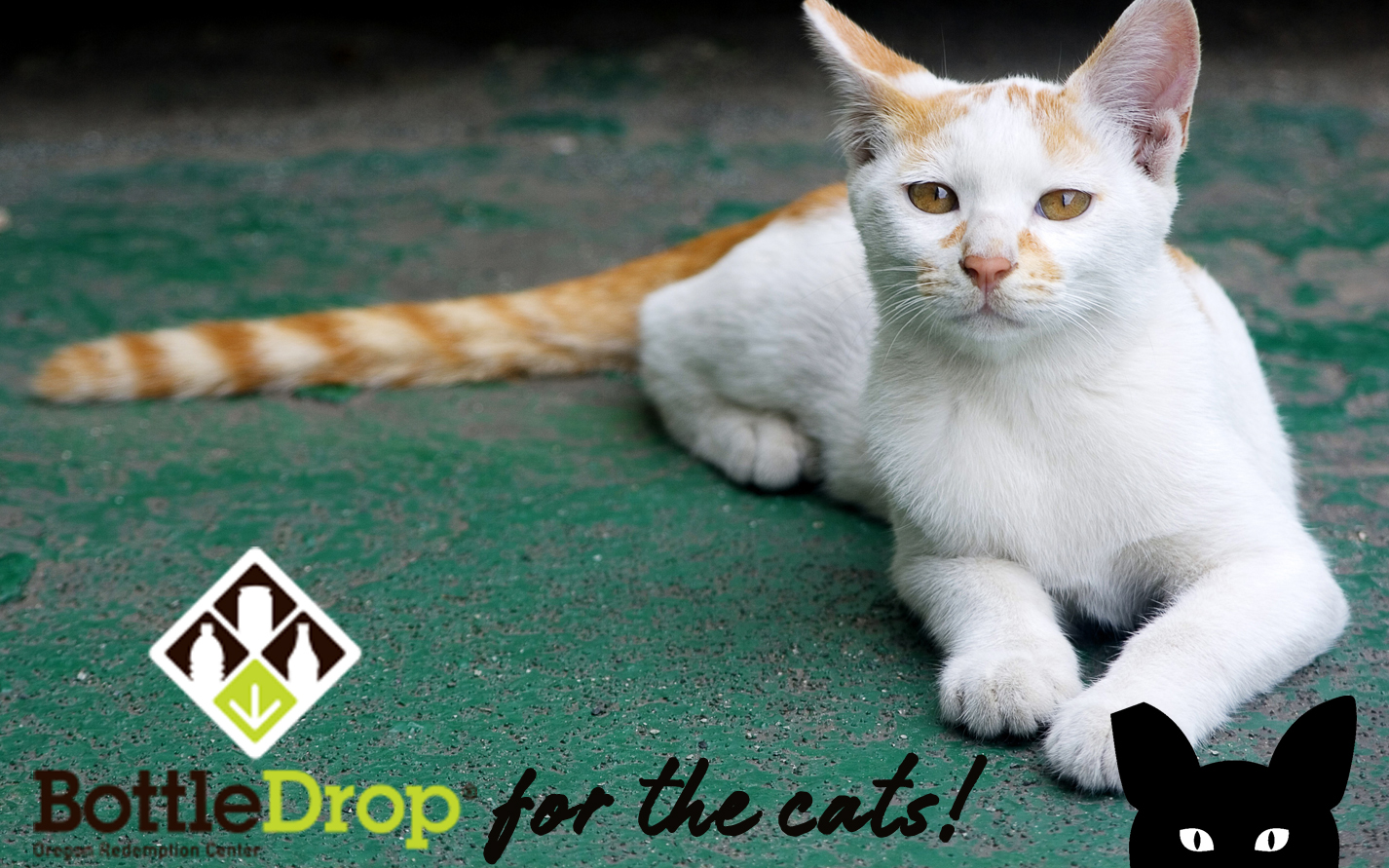 Gestrenol - drops for cats: instructions for use, composition and effectiveness 29