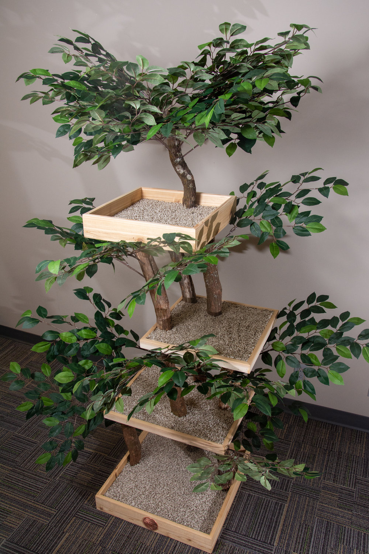 Serene Feline tri-level tree house