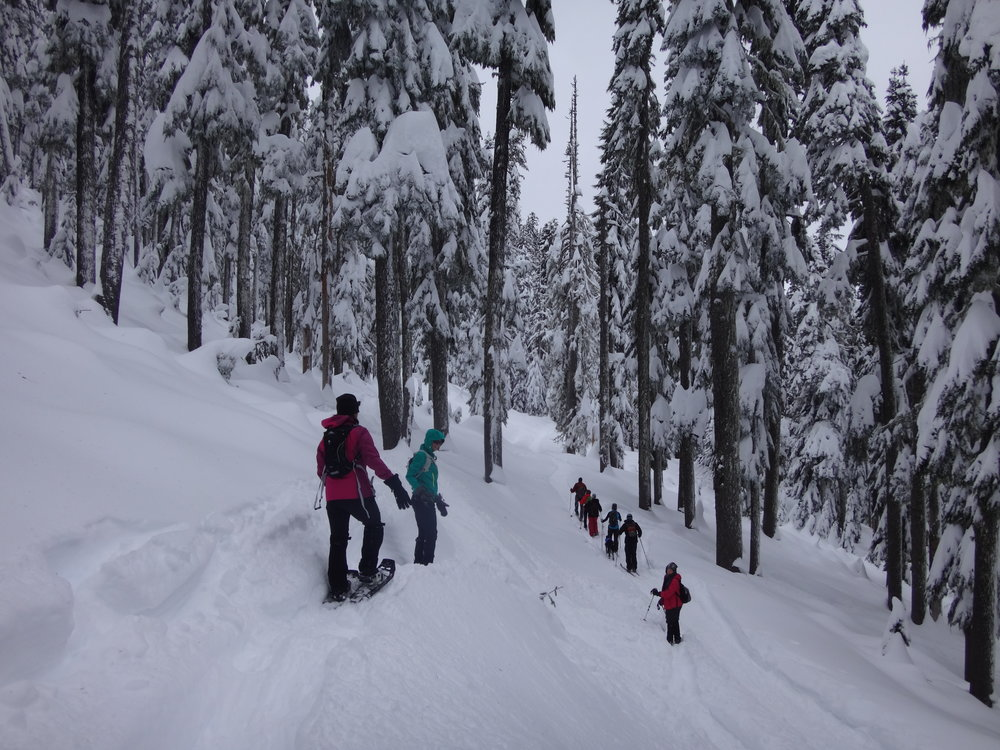 Snowshoeing at Bennet Pass