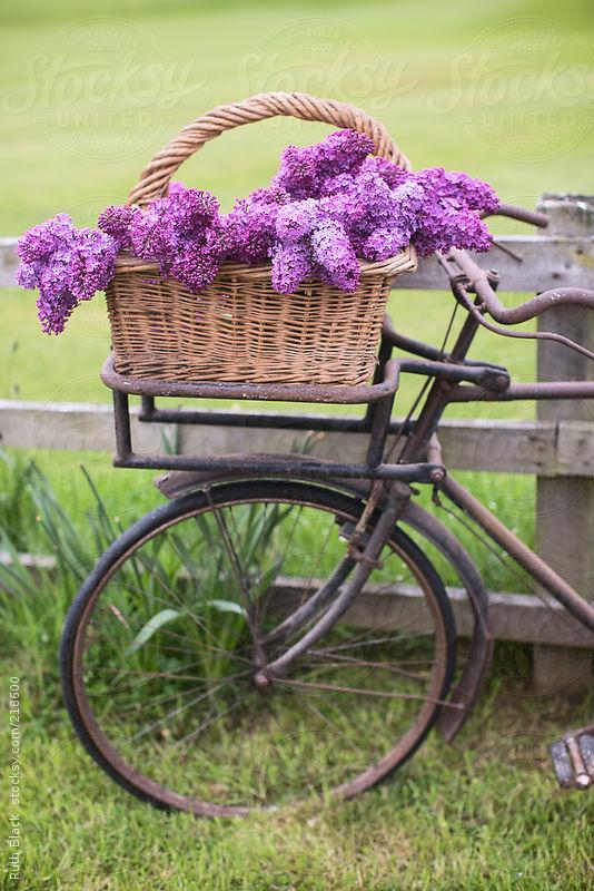 Love the basket full of flowers