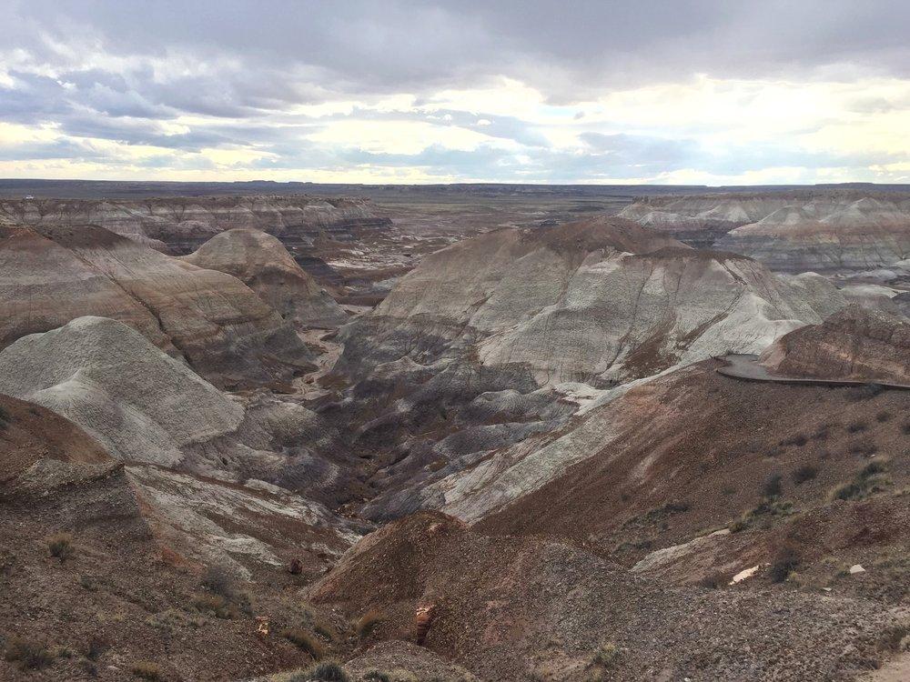 Blue Mesa Trail, Petrified National Forest / Arizona U.S.A.
