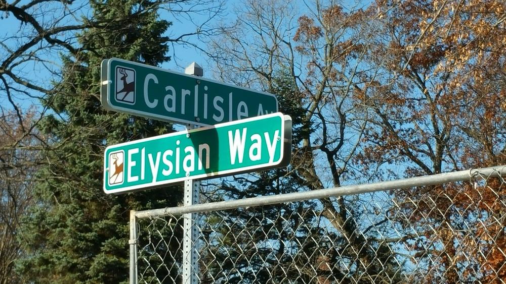 Elysian Way-Carlisle corner