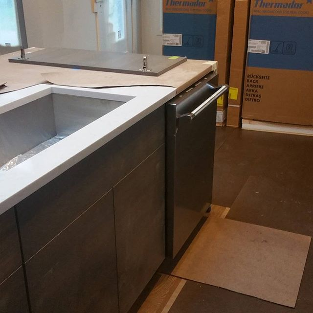 Elysian Way Dishwasher #elysianway #homesbyinsignia #deerfield #thermador #newconstruction