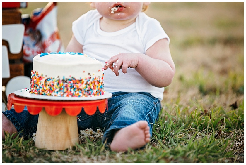 Eastons-first-birthday-session-watauga-baseball (22).jpg
