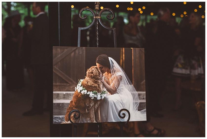 classic_oaks_ranch_wedding (167).jpg