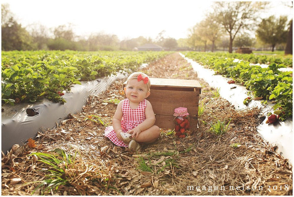 strawberry_patch_session_fort_worth_photographer34.jpg