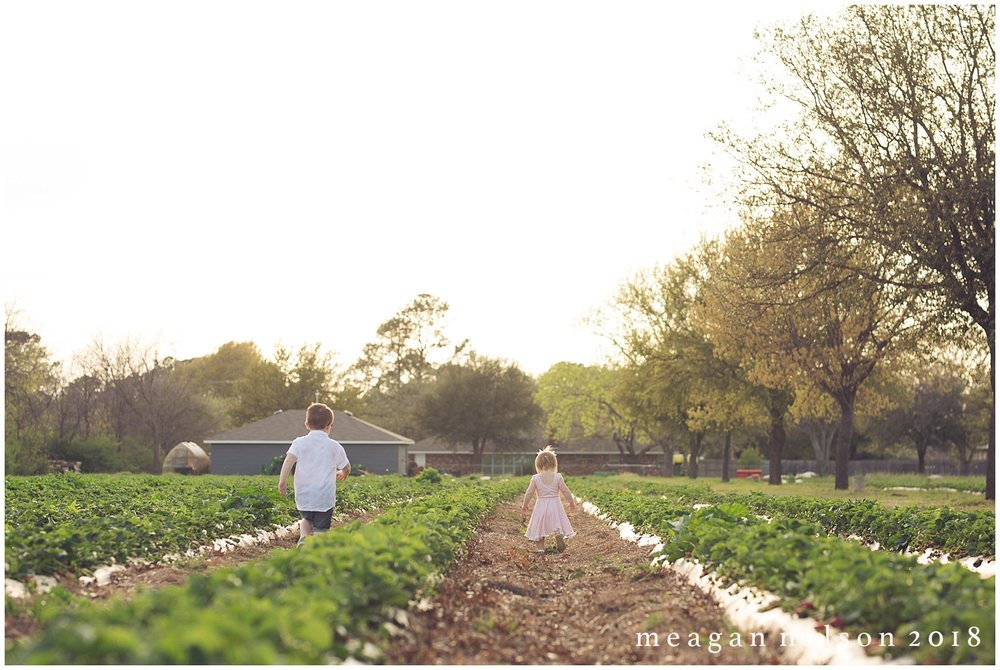 strawberry_patch_session_fort_worth_photographer43.jpg