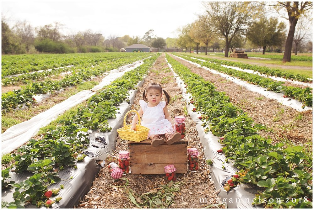 strawberry_patch_session_fort_worth_photographer54.jpg