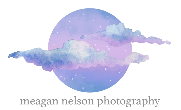 Meagan Nelson Photography