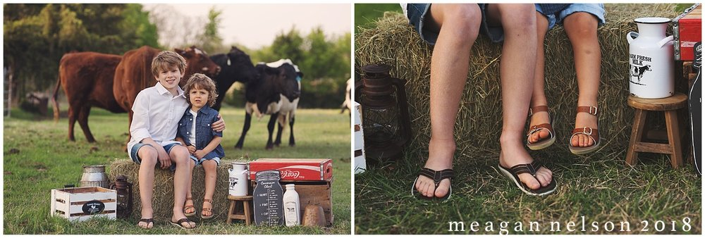 fort_worth_family_photographer_cow_mini_sessions001.jpg