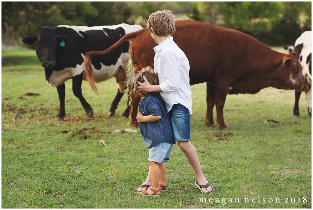 fort_worth_family_photographer_cow_mini_sessions005.jpg