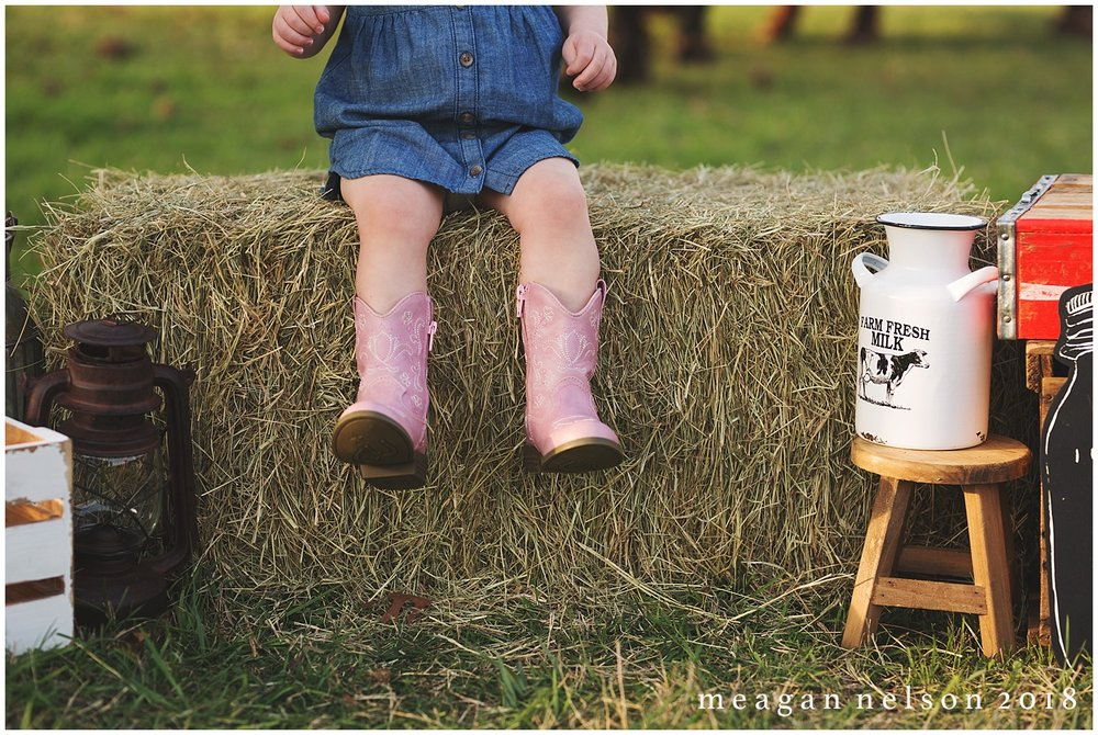fort_worth_family_photographer_cow_mini_sessions008.jpg