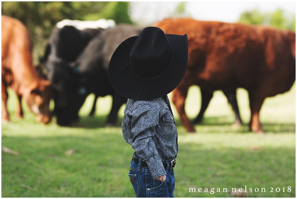 fort_worth_family_photographer_cow_mini_sessions014.jpg