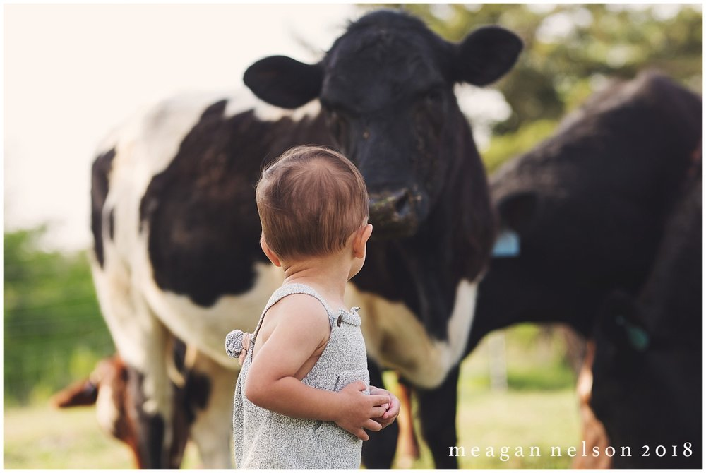 fort_worth_family_photographer_cow_mini_sessions033.jpg