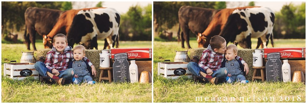 fort_worth_family_photographer_cow_mini_sessions035.jpg