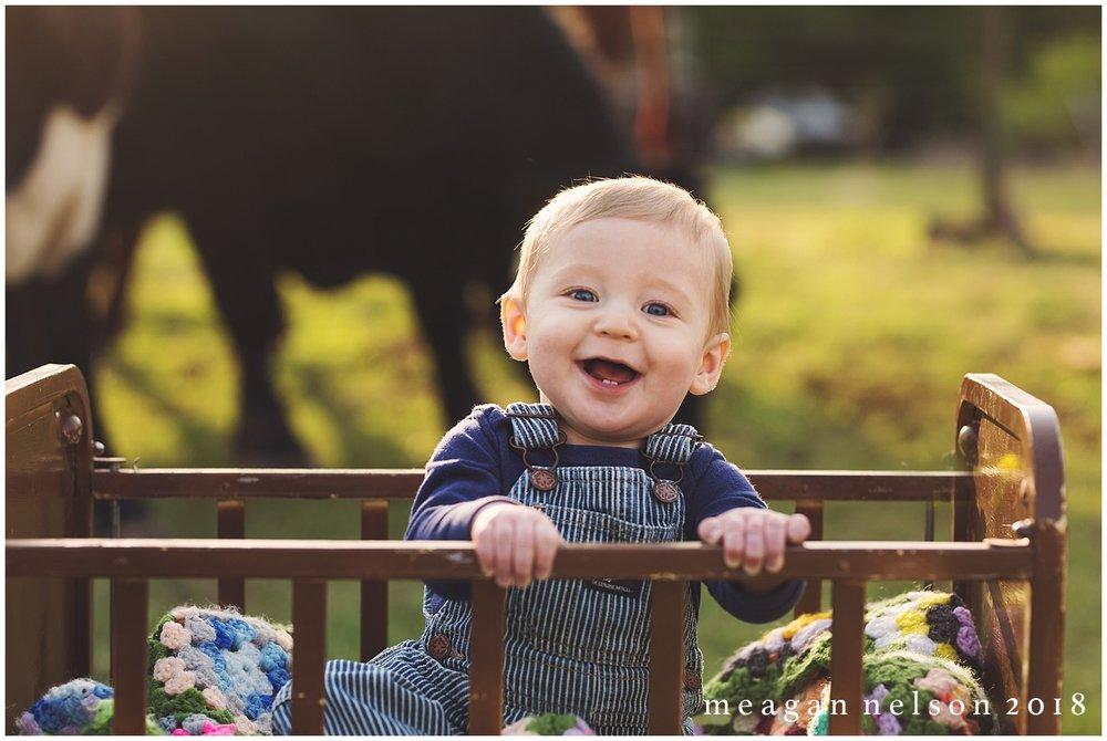 fort_worth_family_photographer_cow_mini_sessions038.jpg