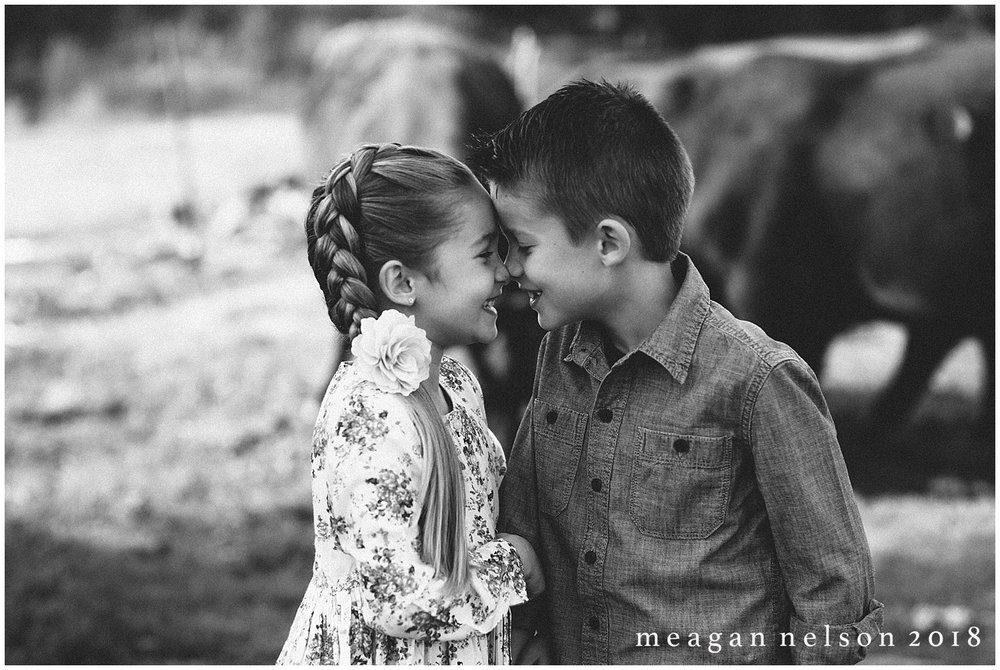 fort_worth_family_photographer_cow_mini_sessions055.jpg