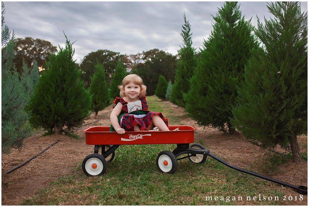 tree_farm_session_weatherford_tx_fort_worth_photographer043.jpg