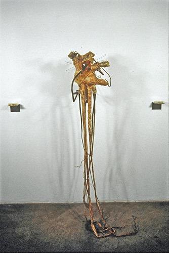 Transplant - Floragraft 33