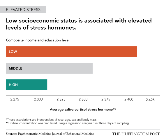 Check out this study that finds increased levels of cortisol stress hormone in people of lower SES.