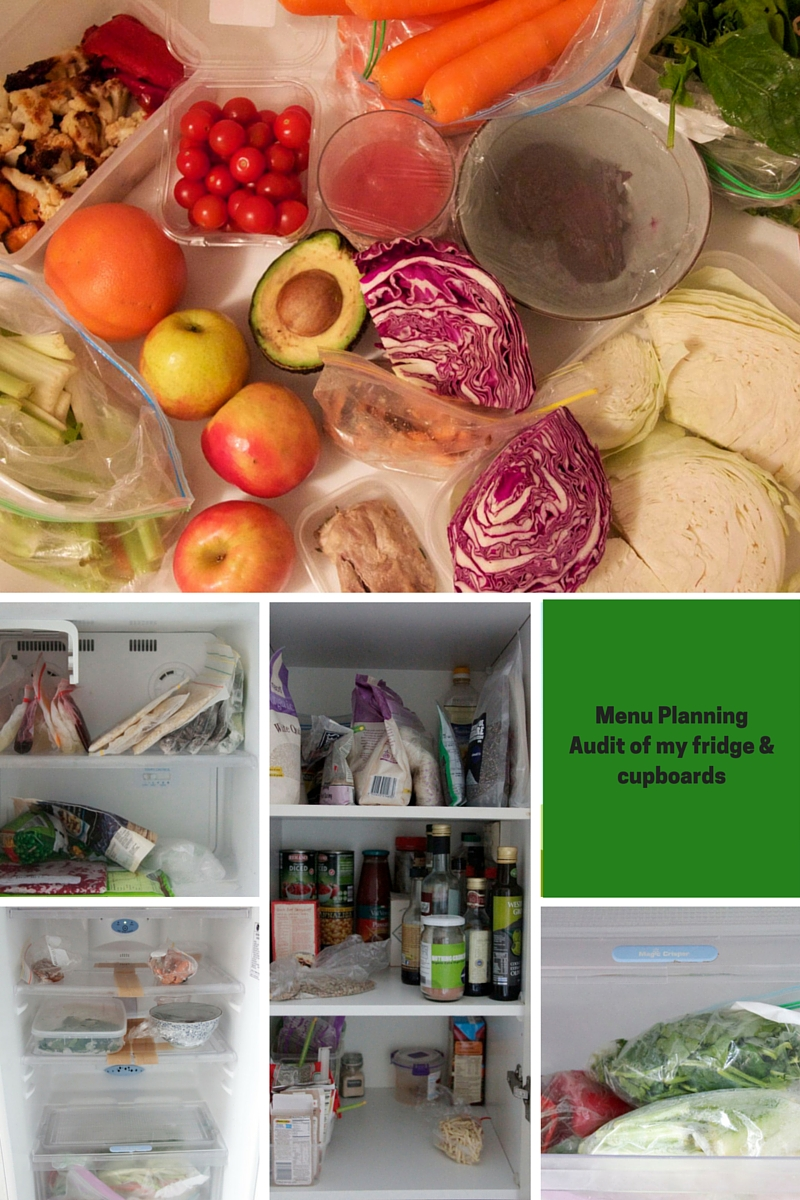Menu planning for one person - fridge audit 160620