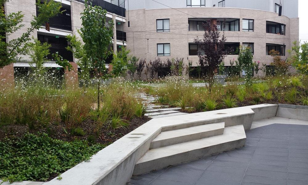 Kingston Foreshore apartments garden