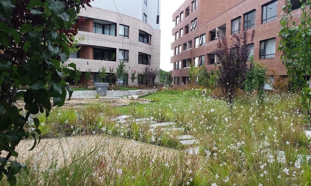 Kingston apartments garden