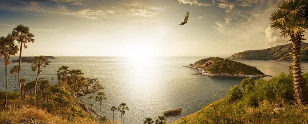 Condor-panorama.jpg