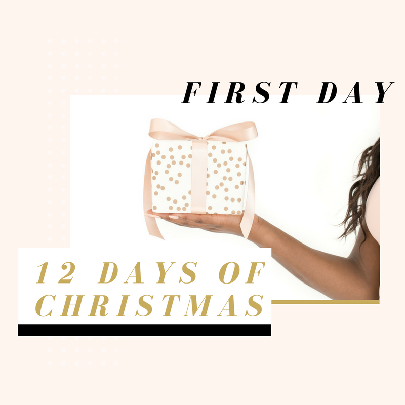 12 days of christmas - Day 1.png
