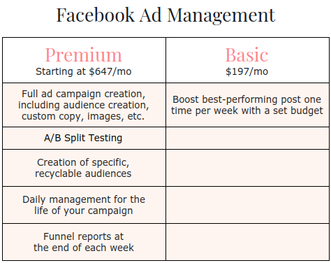 Facebook Ad management manager