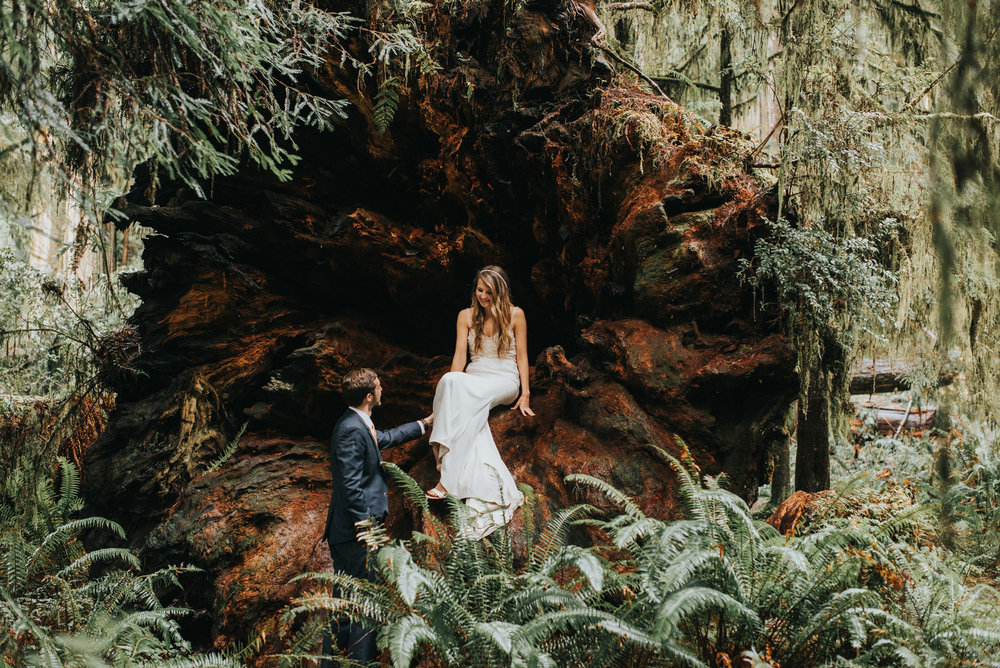 Beautiful bridal elopement style portraits of this Texan couple here on their honeymoon in the Northern California Redwood Forest.