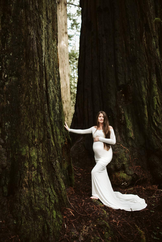 Maya Redwoods Maternity-26.jpg