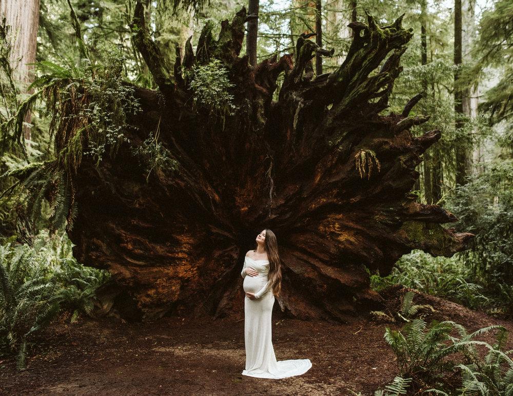 Maya Redwoods Maternity-30.jpg