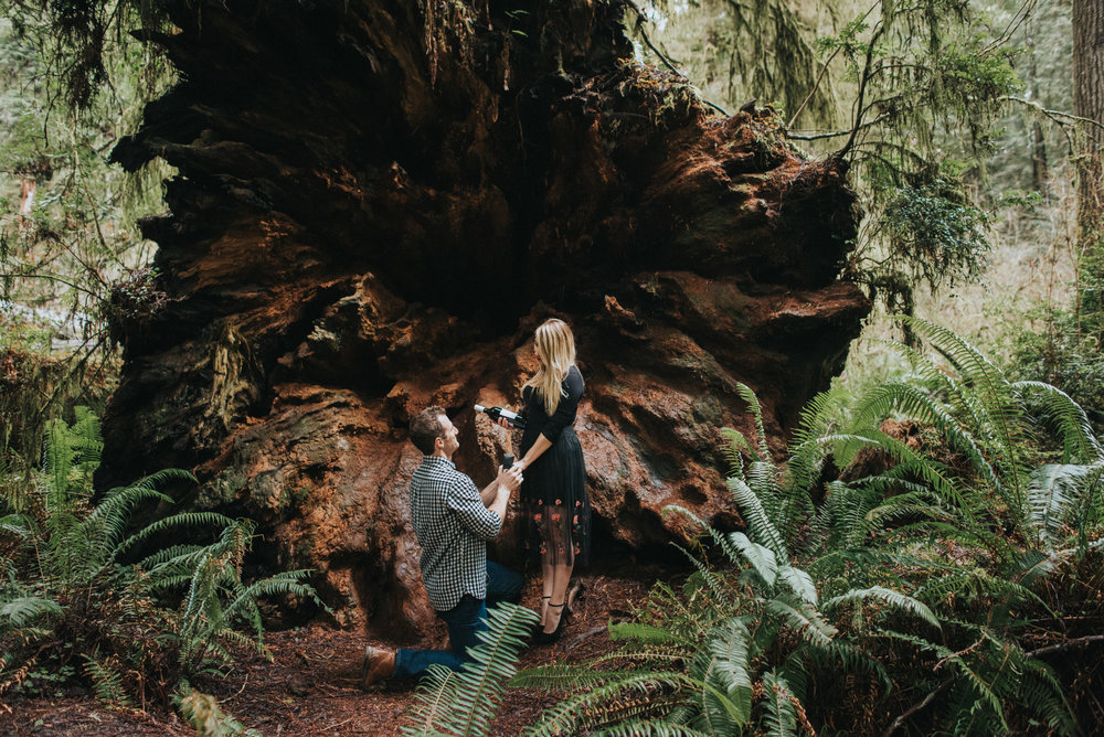 Thyla and Nick Redwoods Engagement Session-32.jpg