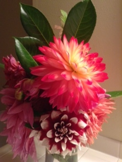 Vibrant Whidbey Island summer Dahlias are always an inspiration.