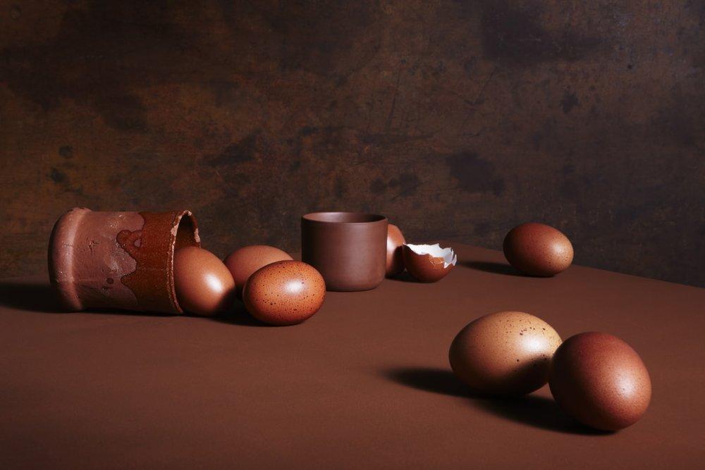 04_brown_exploration_of_eggs_ret_web-min.jpg