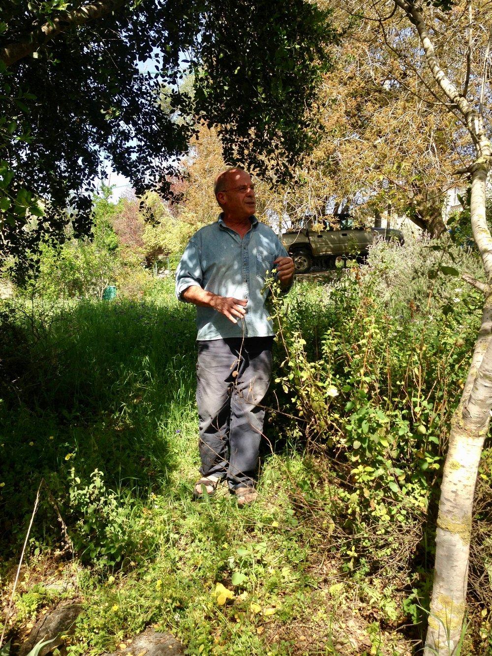Israeli author Meir Shalev in his garden