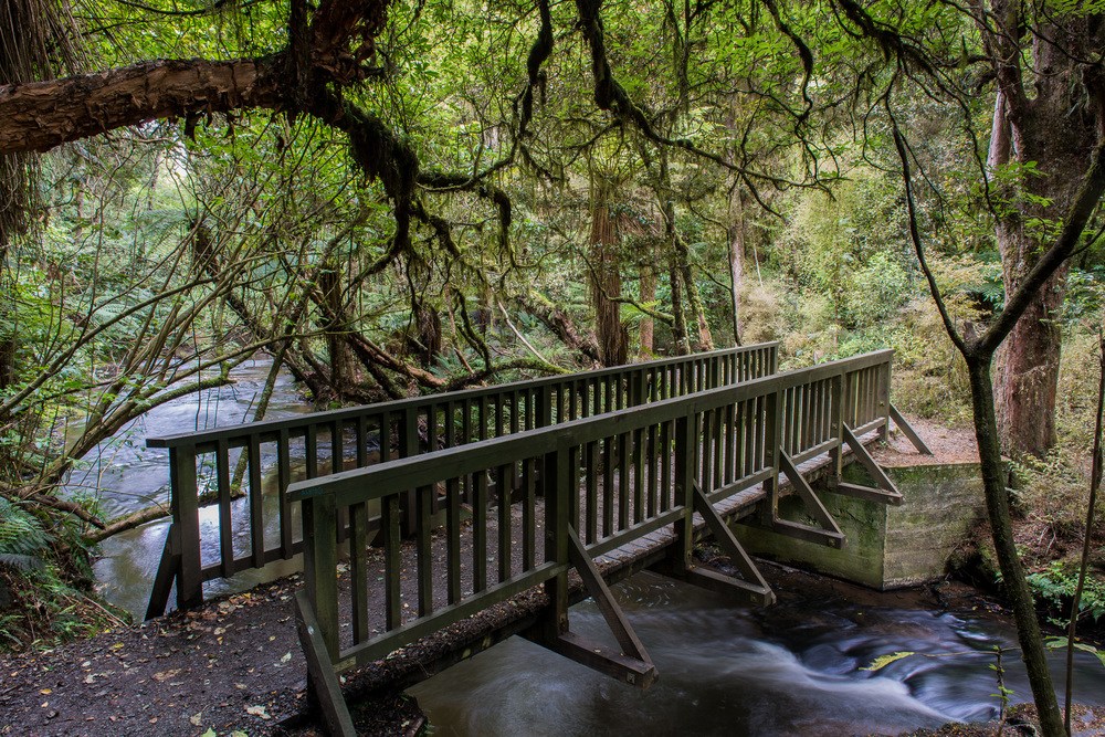 A Bridge, The Catlins, South Island, New Zealand