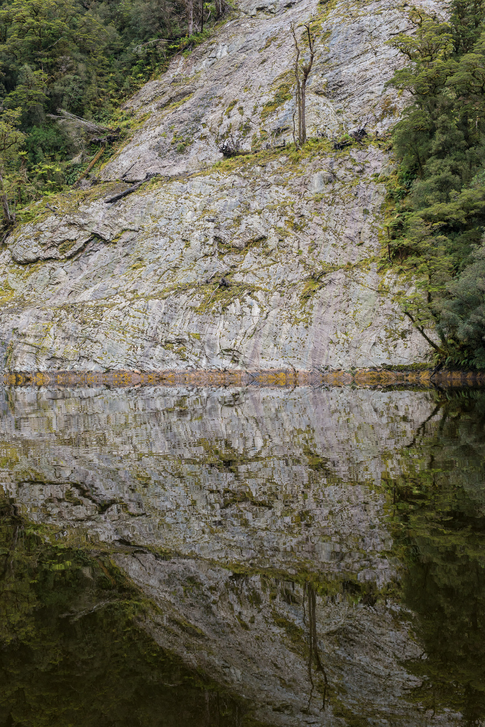 Doubful Sound, Fiordland NP. New Zealand