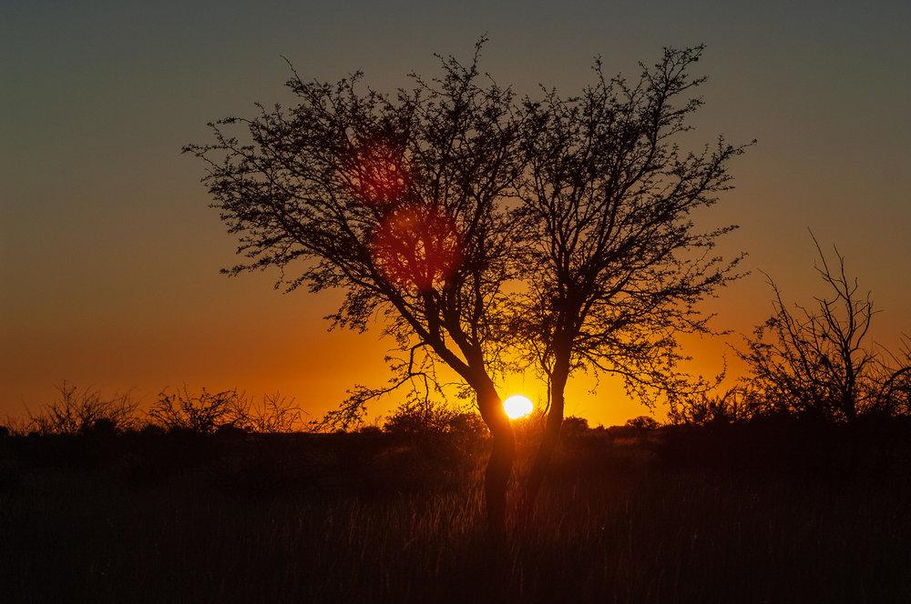 namibia-2006-4.jpg