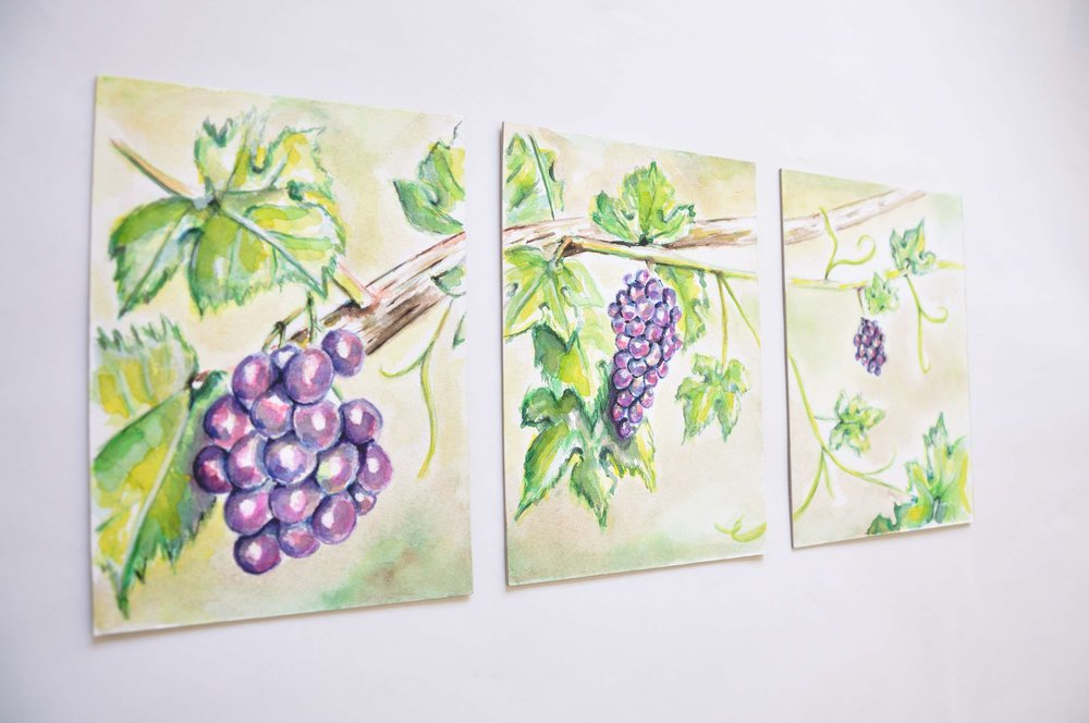 Grapevine.  2011 // watercolor painting panels