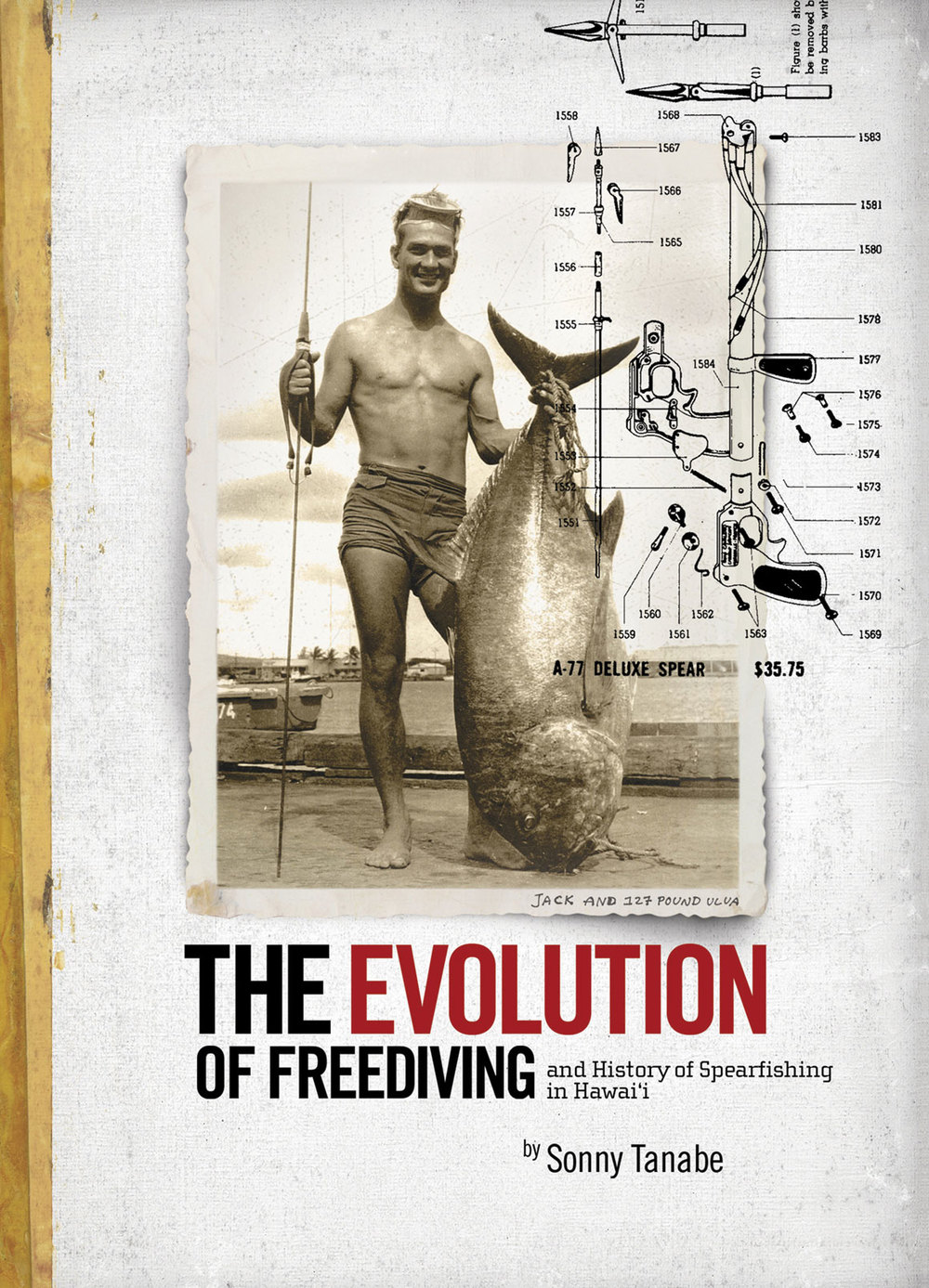 THE EVOLUTION OF FREEDIVING