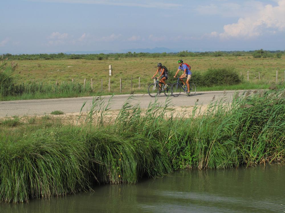 på cykel i Camargue.foto F.Ferreira