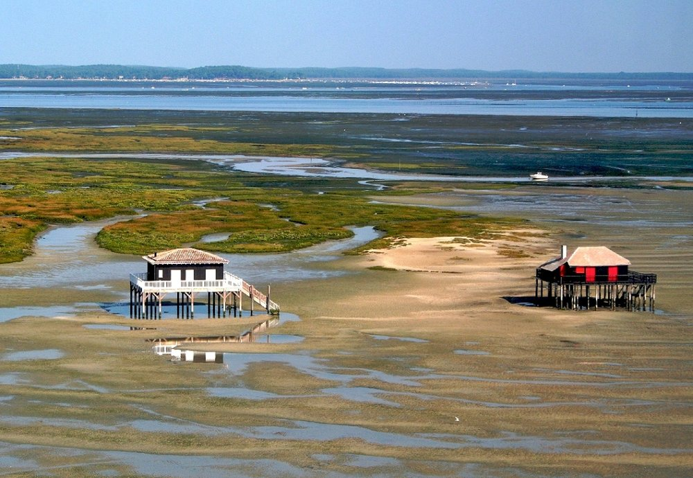 Arcachon bay bike tour-1.jpg