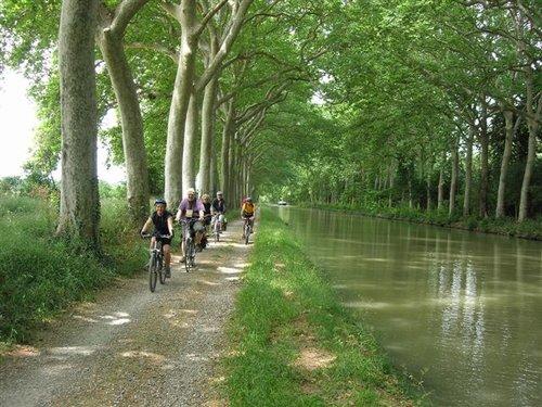 Canal du midi kantad av plataner.