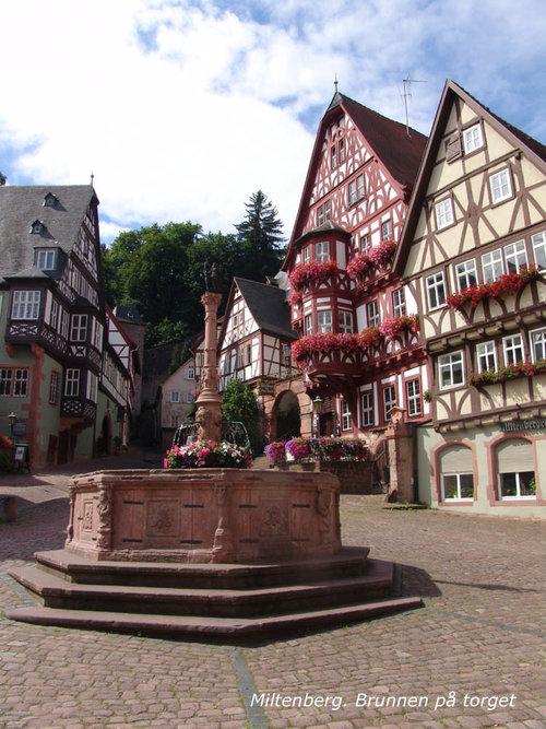 Main_Miltenberg_Brunnen+Marktplatz+2.jpg